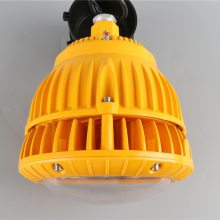 依客思供应FGV1206-50w应急照明两用LED防爆节能灯