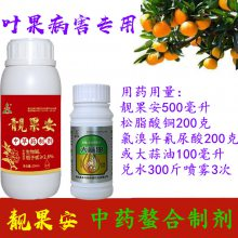防控芒果角斑病流胶病药剂靓果安松脂酸铜