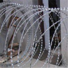 围墙顶部防爬网 镀锌刀片刺网 铁路刺丝滚笼