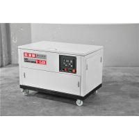 30千瓦汽油发电机稀土永磁