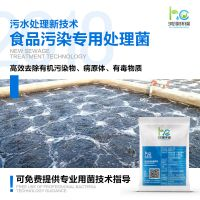 鸿淳环保食品污水处理菌种专用硝化细菌高效去COD氨氮总氮