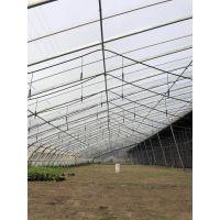 农业生产100亩蔬菜大棚喷灌工程设备设计安装