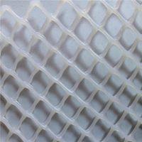 养殖塑料床网 养鸭塑料床网 塑料网定做