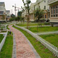 公路绿化护栏 小区花园围栏 菜园围栏