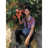 哪里买红宝石葡萄柚苗__80cm葡萄柚苗批发价格
