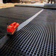 德州2公分塑料排水板价格 凹凸型防渗耐根抗穿刺