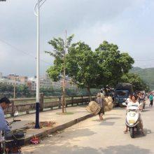 西藏LED太阳能路灯厂家直销