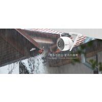 壁挂式互联网摄像机(720P、主动防御、双天线、语音对讲、30米红外、防水防尘)