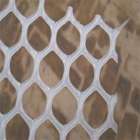 塑料漏粪网 绿色塑料养殖网 养殖场塑料网