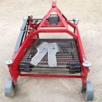 红薯收获机 全自动四轮车带马铃薯地瓜土豆挖掘 机多功能根茎收获机