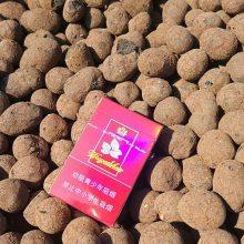 安徽陶粒让你想不到的优惠价格