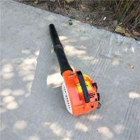 背负式路面除灰机 手持式大功率冬季强力吹雪机