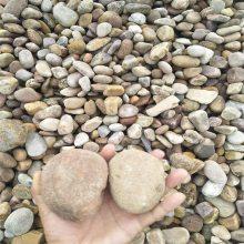 天然鹅卵石生产基地,河北天然鹅卵石产地