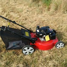 优质小型草坪机 自走式优质草坪修剪机
