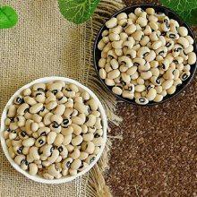 白饭豆提取物 20:1四季豆多糖 1公斤起订 批发价 现货包邮