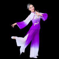 2017新款扇子舞表演成人女古典舞民族舞蹈服装广场舞秧歌服演出服