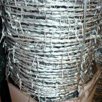 刺绳护栏网 刺绳围栏网 芒刺线