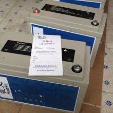 艾诺斯霍克蓄电池2T100 2V100ah免维护蓄电池 机电 通信设备专用 进口电池