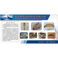武汉新科白蚁防治有限公司