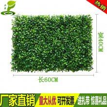 室内外墙户外绿化装饰仿真绿植墙人造塑料草坪地毯假草皮叶子绿萝