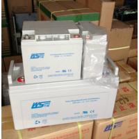 SN38-12 万松蓄电池12V38AH 用于UPS/EPS/直流屏电源普通干电池