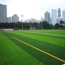 冀跃体育供应 仿真草坪生产 人造草坪造价 仿真假草地毯