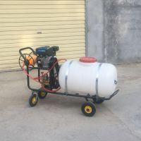 亚博国际真实吗机械 杀虫杀菌烟雾机 新款手推式电动喷雾器 苹果树杀虫打药机 小型手推式电动喷雾器