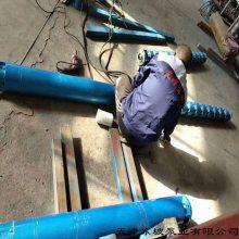 立式管道排污泵-立式潜水排污泵-市政工程污水泵