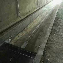 现代化养猪场粪便处理 一拖二刮粪机 凯胜定制清粪机