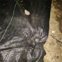 山西防草布 苹果园铺盖1米宽