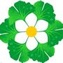 邳州美之枫园林绿化工程有限公司