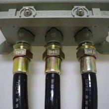 PVC防爆挠性连接管、BNG-DN20*700防爆过线管
