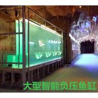 定制型太空智能负压鱼缸大型场馆展示观赏科普互动高展面工程鱼缸