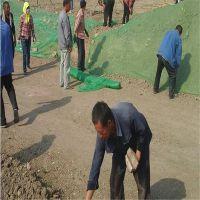 工程覆盖网 盖工地绿网 渣土覆盖网
