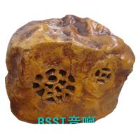 15W/30W 210草坪音箱(石头型) CP201