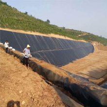 黑龙江2.0毫米聚乙烯土工膜 垃圾填埋场防渗覆盖用
