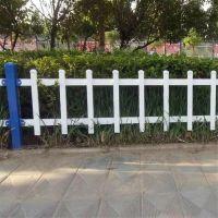 花池绿化带围栏_花池装饰栅栏_塑钢隔离栏杆