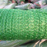 工地盖土网厂家 塑料盖土网 防尘抑尘网