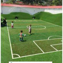 屋面草坪用途