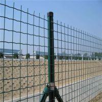 养鸡场铁丝网 兴来淄博铁丝网 双边围栏网价格