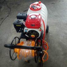 科圣厂房消毒喷药机/高压远射程果树杀虫喷雾器/手推式汽油电动打药机