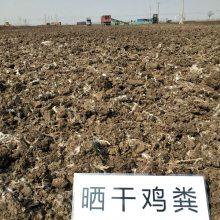 山东哪里有卖鸡粪的厂家 厂家批发优质鸡粪 干鸡粪 发酵鸡粪大棚蔬菜种植专用肥