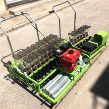辽宁农场种菜专用精播机 1-12行汽油自走式娃娃菜播种机