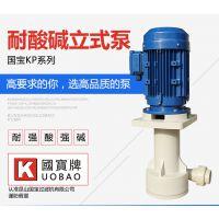 江苏立式离心排污泵 国宝泵业1.5KW耐酸碱立式泵 产品质量可靠