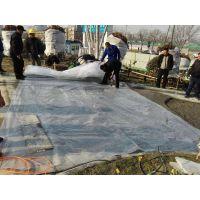 烟台透水混凝土胶结料厂家 工程:多年透水混凝土胶结料厂家-YX
