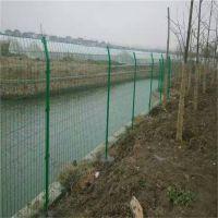 水池防护网 钢丝围墙网 家庭院墙铁丝网