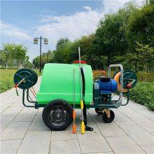 牛场消毒拉管式喷药机 300升汽油喷药机报价 花卉草场杀虫打药机厂家