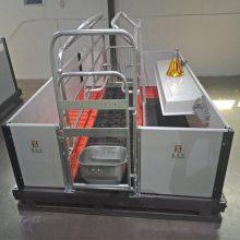 养猪设备厂家生产母猪产床母猪站栏保育床自动化供料系统