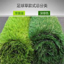 阻燃仿真草坪 潍坊仿真草坪 绿色假草皮哪里卖
