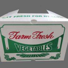 中空板蔬菜包装箱厂家